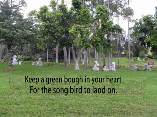 Two joys songs and birds.