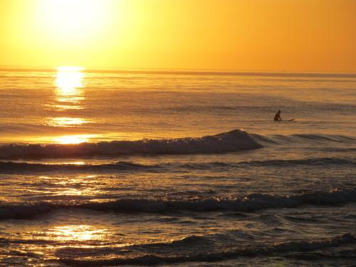 A sole surfes.