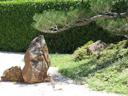 Zen Garden ,note the tree shadow on the rock.